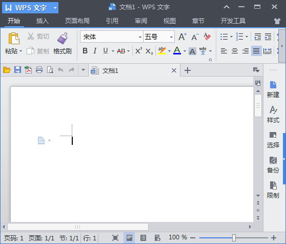 WPS Office Word